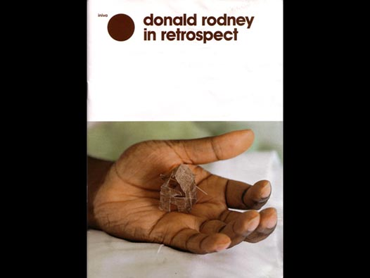 image of Donald Rodney | In Retrospect - exhibition guide