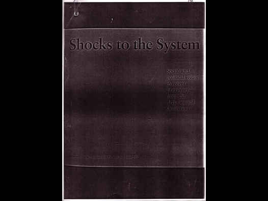 image of Shocks to the System