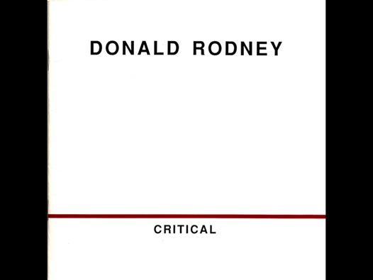 image of Donald Rodney | Critical